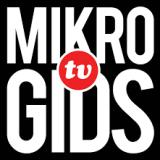 Mikrogids